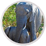 Protective Mother Elephant In Kruger National Park-south Africa Round Beach Towel