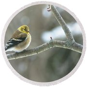 Proud Finch Round Beach Towel
