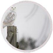 Proud Snowy Owl Round Beach Towel