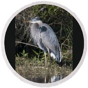 Pround Blue Heron Round Beach Towel