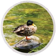Psychedelic Duck  Round Beach Towel