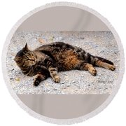 Psycho The Cat Round Beach Towel