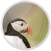 Puffin Profile Round Beach Towel