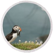 Puffin With Sandeels Round Beach Towel