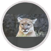 Puma Head Shot Round Beach Towel