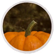 Pumpkin Macro 4 B Round Beach Towel