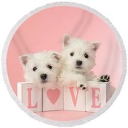 Puppy Love Round Beach Towel by Greg Cuddiford