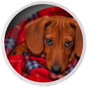 Puppy Love Round Beach Towel