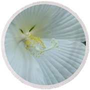 Pure And Sensual Round Beach Towel
