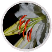 Pure Lily Round Beach Towel