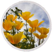 Purely Poppies  Round Beach Towel