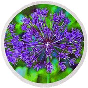 Purple Allium Flower Round Beach Towel