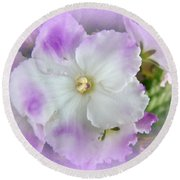 Purple And White Fancy African Violets Round Beach Towel