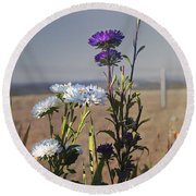 Purple And White Flowers In The Sun Round Beach Towel