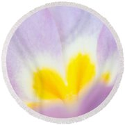 Purple And Yellow Primrose Petals - Bright And Soft Spring Flower Round Beach Towel