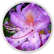 Purple Azalea Round Beach Towel