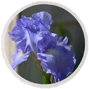Purple Beauty Iris Round Beach Towel