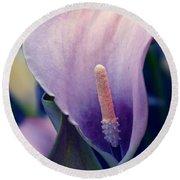 Purple Calla Flower Round Beach Towel