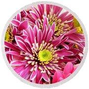 Purple Chrysanthemum Round Beach Towel
