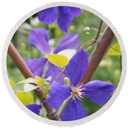 Purple Clematis Clinging On A Fence Round Beach Towel