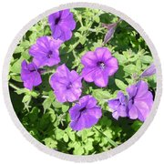 Petunias Purple Club Round Beach Towel