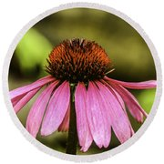 Purple Coneflower - Single Round Beach Towel