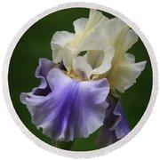 Purple Cream Bearded Iris Round Beach Towel