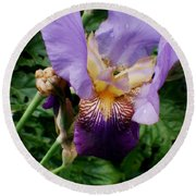 Purple Flower After Rainfall Round Beach Towel by Doc Braham