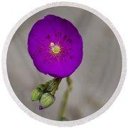 Purple Flower With Buds Round Beach Towel