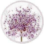 Purple Flowering Onion Round Beach Towel