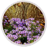 Purple Flowers At Base Of Tree Round Beach Towel