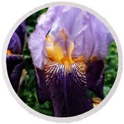 Purple Flowers In England Round Beach Towel by Doc Braham