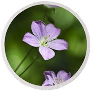 Purple Geranium Flowers Round Beach Towel