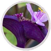 Purple Heart Flower Round Beach Towel