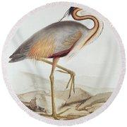 Purple Heron Round Beach Towel