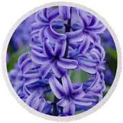 Purple Hyacinth Round Beach Towel