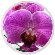 Purple Infusion Round Beach Towel