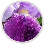 Purple Iris - 2 Round Beach Towel
