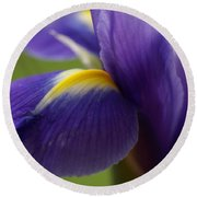 Purple Iris 8 Round Beach Towel