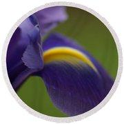 Purple Iris 9 Round Beach Towel