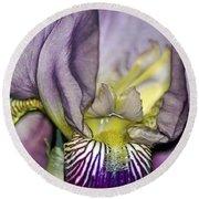 Purple Iris - Macro Round Beach Towel