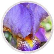 Purple Iris Macro Round Beach Towel