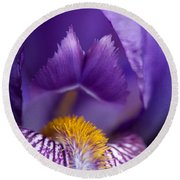 Purple Iris Macro Textured 1 Round Beach Towel