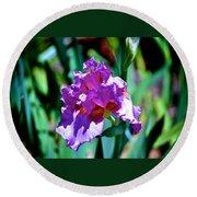 Purple Iris Opens Round Beach Towel