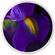 Purple Light Iris Macro Round Beach Towel