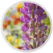Purple Lupine Flowers Round Beach Towel