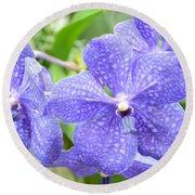 Purple Mokara Orchid Round Beach Towel