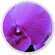 Purple Orchid 7 Round Beach Towel