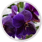 Purple Orchids Round Beach Towel