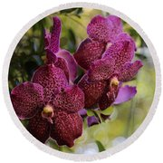 Purple Orchids With Bokeh Round Beach Towel